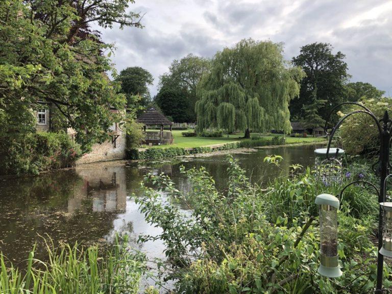 Walks around Cambridgeshire: Milton